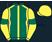 Dark green, yellow seams, yellow sleeves, dark green armlets, yellow cap}
