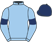 Mrs C M Clarke, Foulrice Park Racing Ltd silks