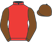 Silk colours for SHANTOU FLYER (IRE), trained by Mrs Rose Loxton and owned by David Maxwell Racing Limited