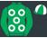 Green, white rings, quartered cap}