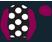 Black, white spots, purple sleeves and cap, black peak}