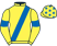 Silk colours for RAVENHILL (IRE), trained by Gordon Elliott, Ireland and owned by Try Ravenhill Syndicate