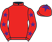 Biddestone Racing XIII silks