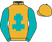 Guy Carstairs & Horses First Racing silks