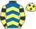 South East Racing Club silks