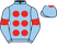 Silk Racing Co Ltd silks