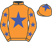 Dreamstar Racing (Nom: Mrs S M Binda) silks