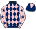 Woodham Walter Partnership silks