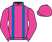 Kangyu Int Racing Ltd silks