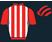 Paul Cairns Racing Limited silk