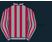 Mickael Barzalona silk