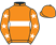 Mr E. Parkes silks