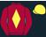 Red Rum Racing silk