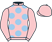 N H J Racing Syndicate silks