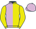 Mr Ruan Pienaar silks