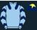 G S Racing Club & Cora's Crew Syndicate silks