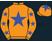 Dreamstar Racing (Nom: Dylan Binda) silks