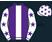 JP's Racing Syndicate silks