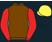 Friends of Ebony Horse Club silks