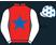 The Racing Suite silks