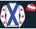 Monty Racing (Pty) Ltd (Andre van Schaik silk