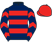 Royale racing syndicate and partner silks
